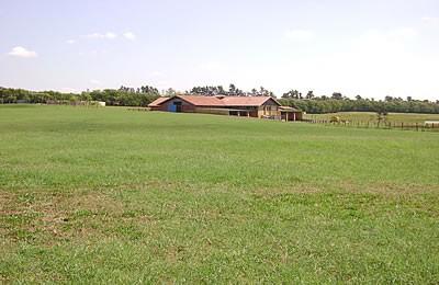 Fazenda para Venda em Tatuí SP – 01094 - Foto 18 / 31