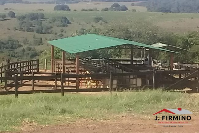 Fazenda para Venda em Tatuí SP – 01094 - Foto 6 / 31