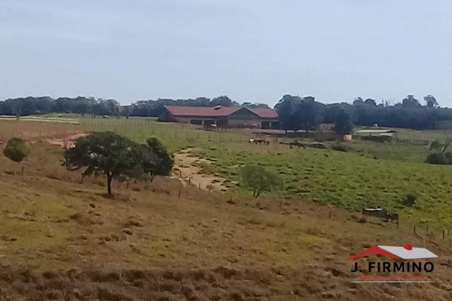 Fazenda para Venda em Tatuí SP – 01094 - Foto 9 / 31