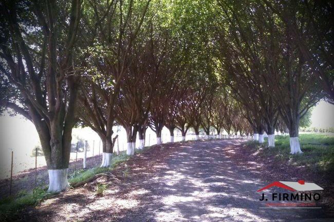 Fazenda para Venda em Tatuí SP – 01094 - Foto 29 / 31