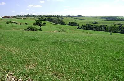 Fazenda para Venda em Tatuí SP – 01094 - Foto 24 / 31