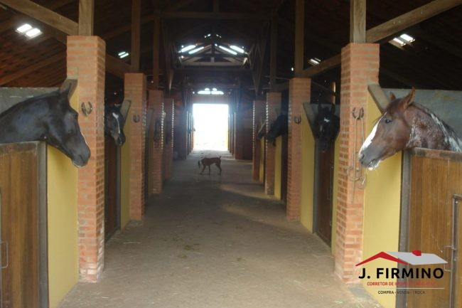 Fazenda para Venda em Tatuí SP – 01094 - Foto 16 / 31